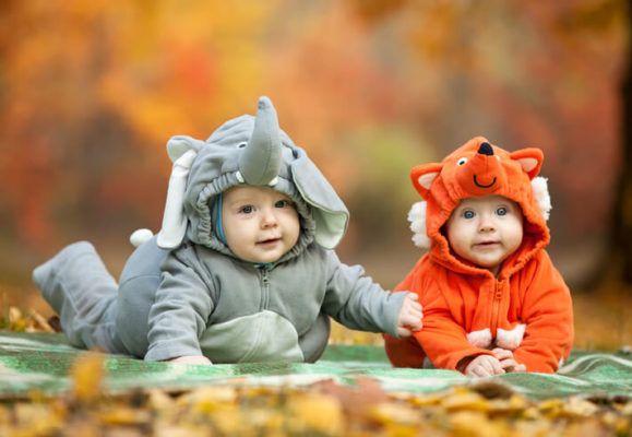 Bebés disfrazados de elefante y zorrito en el día de halloween