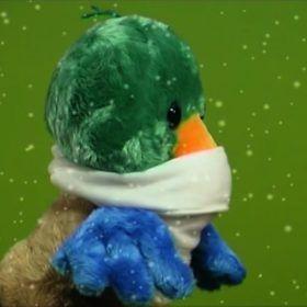 Marioneta de pato soporta una granizada. Fenómenos atmosféricos, meteorológicos.
