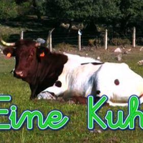 Números en alemán. Una vaca en la naturaleza. Juegos para bebés.