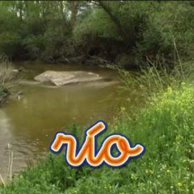 Río naturaleza. Imágenes para bebés